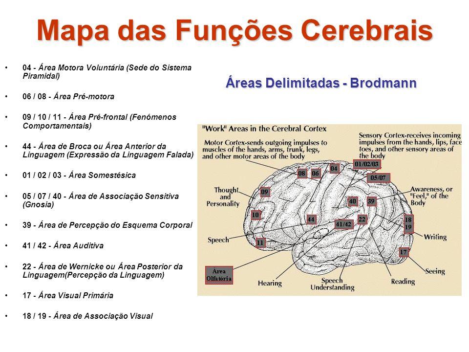 Mapa das Funções Cerebrais