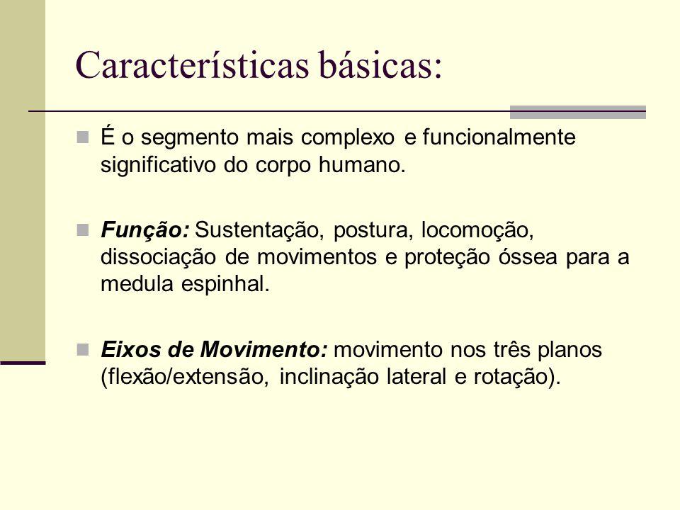 Características básicas: