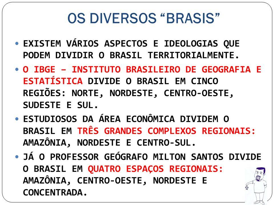 OS DIVERSOS BRASIS EXISTEM VÁRIOS ASPECTOS E IDEOLOGIAS QUE PODEM DIVIDIR O BRASIL TERRITORIALMENTE.