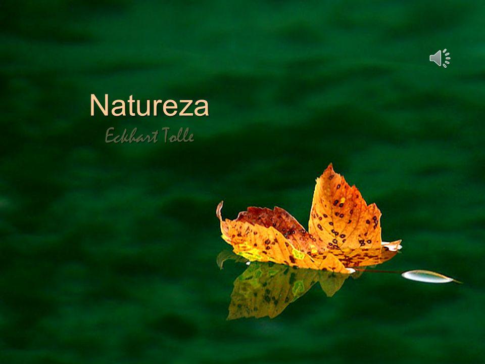 Natureza Eckhart Tolle