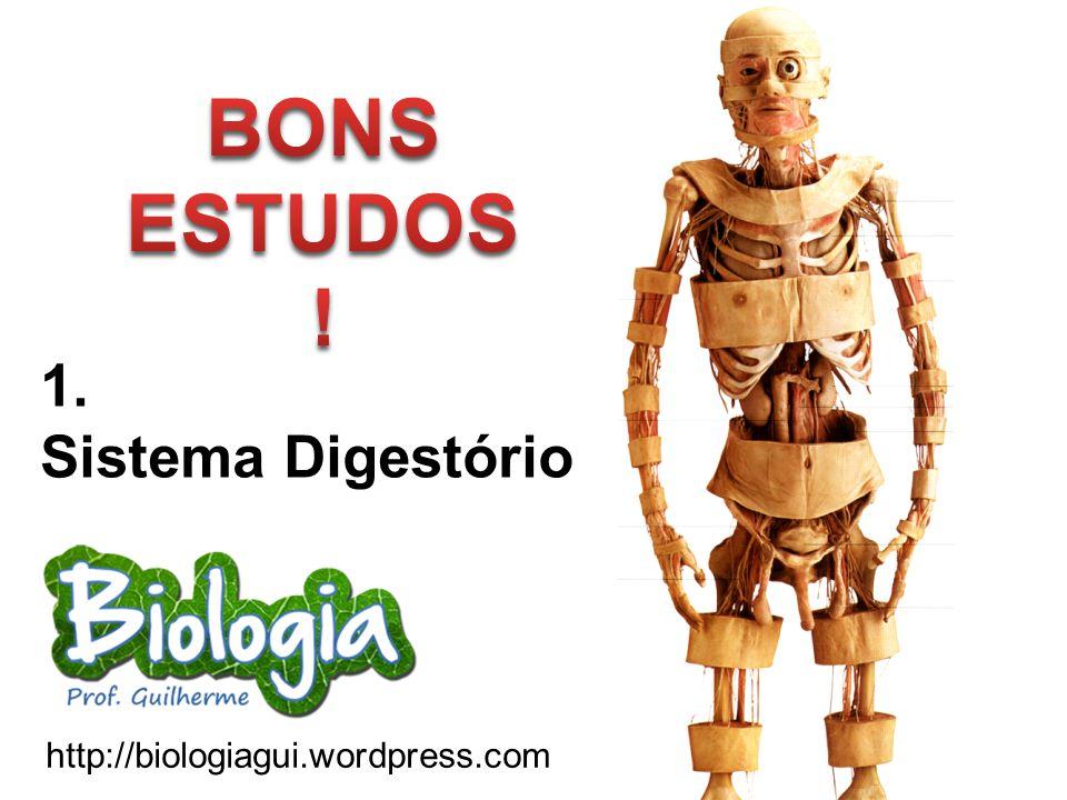 BONS ESTUDOS! 1. Sistema Digestório http://biologiagui.wordpress.com