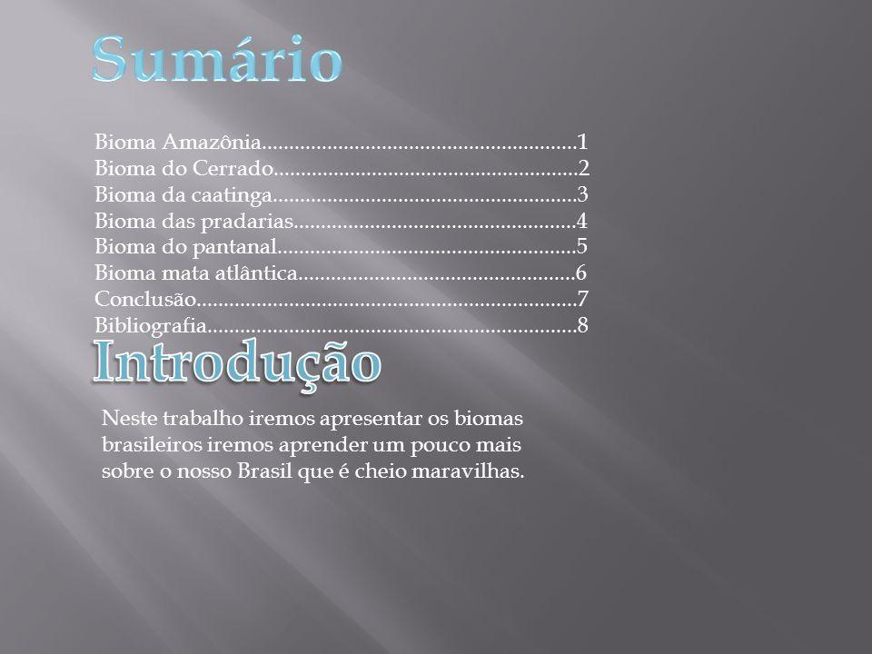 Sumário Bioma Amazônia..........................................................1.