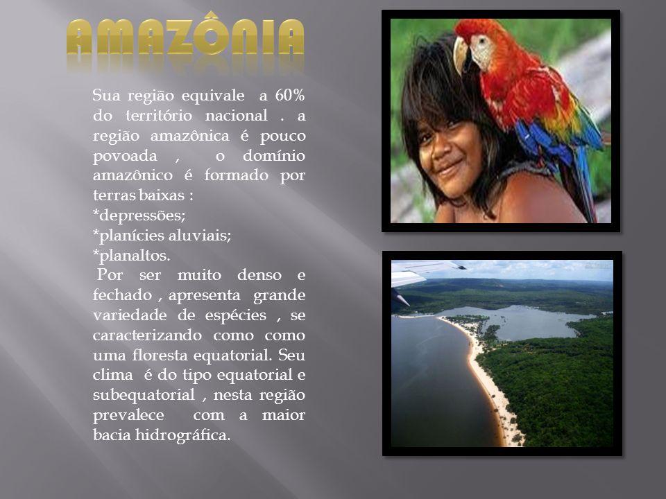 Amazônia Sua região equivale a 60% do território nacional . a região amazônica é pouco povoada , o domínio amazônico é formado por terras baixas :