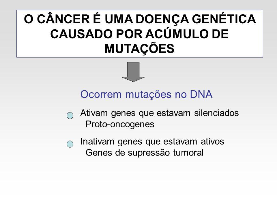 O CÂNCER É UMA DOENÇA GENÉTICA CAUSADO POR ACÚMULO DE