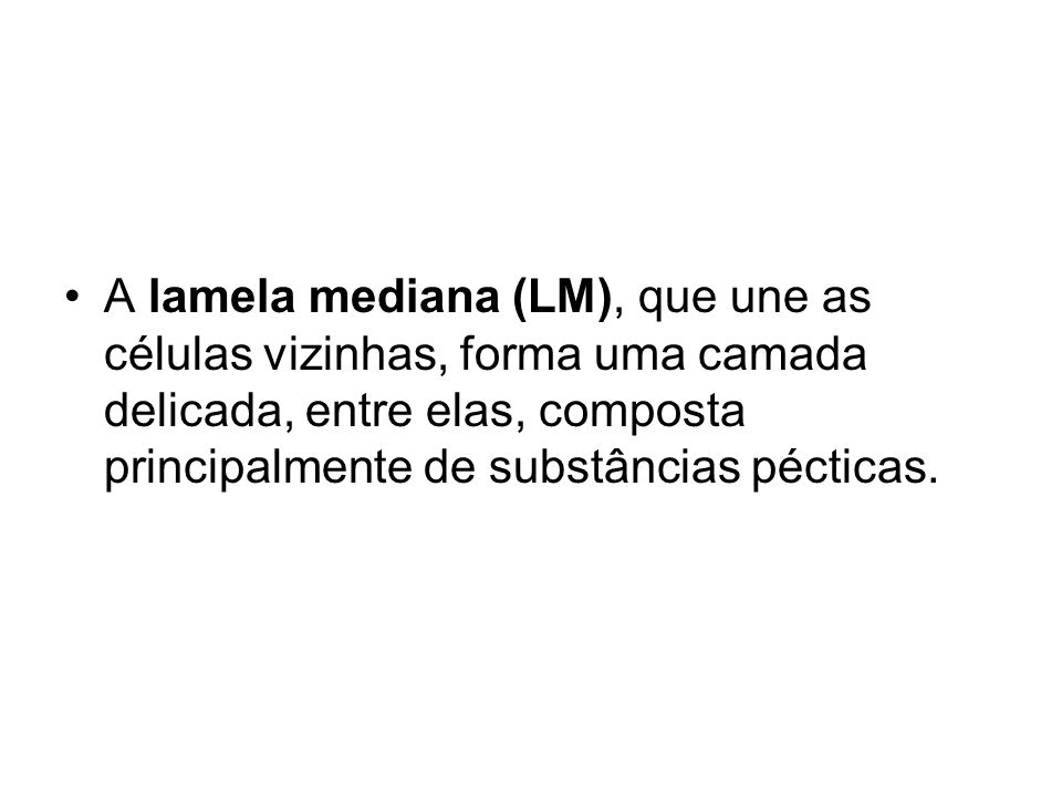 A lamela mediana (LM), que une as células vizinhas, forma uma camada delicada, entre elas, composta principalmente de substâncias pécticas.