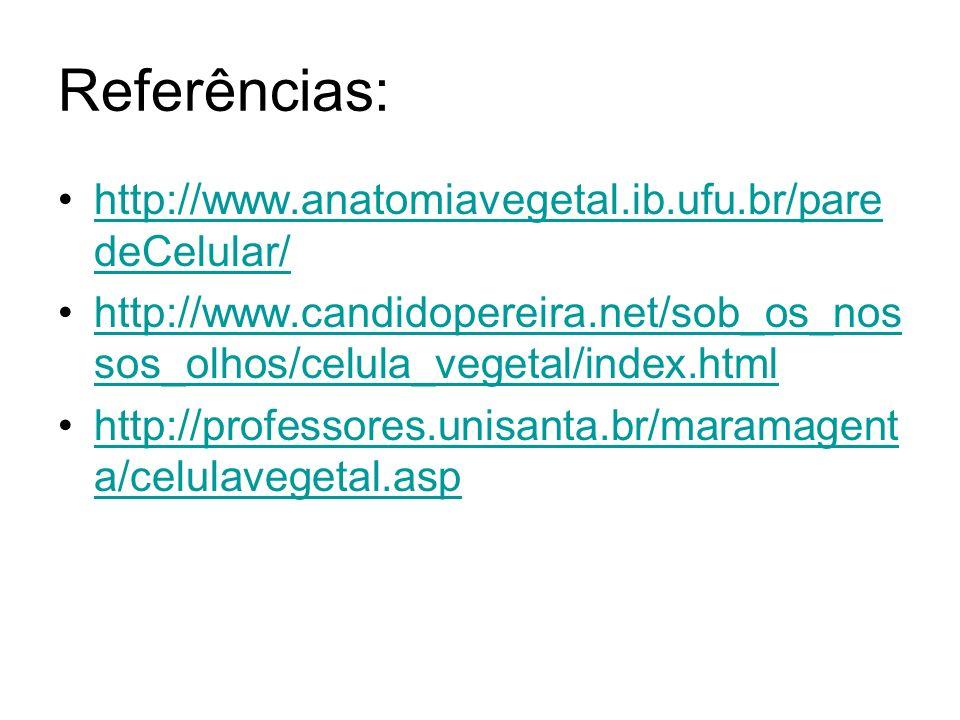 Referências: http://www.anatomiavegetal.ib.ufu.br/paredeCelular/