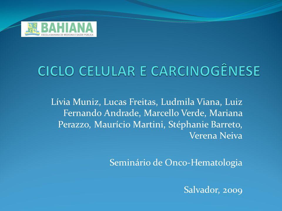 CICLO CELULAR E CARCINOGÊNESE