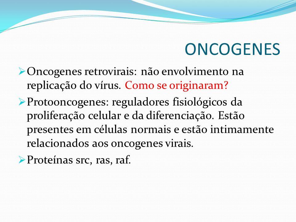 ONCOGENES Oncogenes retrovirais: não envolvimento na replicação do vírus. Como se originaram