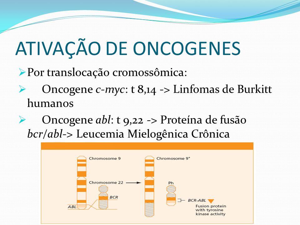 ATIVAÇÃO DE ONCOGENES Por translocação cromossômica: