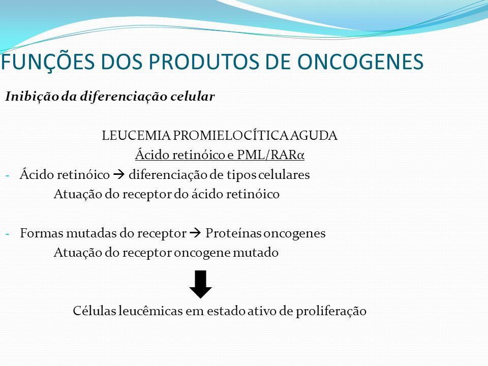 FUNÇÕES DOS PRODUTOS DE ONCOGENES