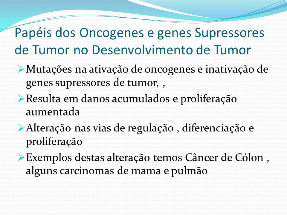 Papéis dos Oncogenes e genes Supressores de Tumor no Desenvolvimento de Tumor