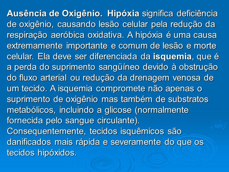 Ausência de Oxigênio.