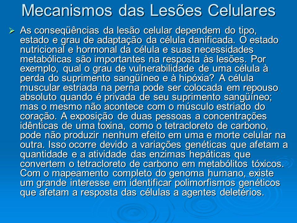 Mecanismos das Lesões Celulares