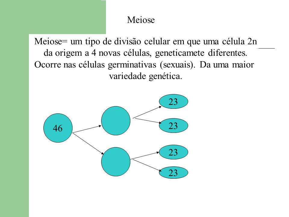 Meiose= um tipo de divisão celular em que uma célula 2n