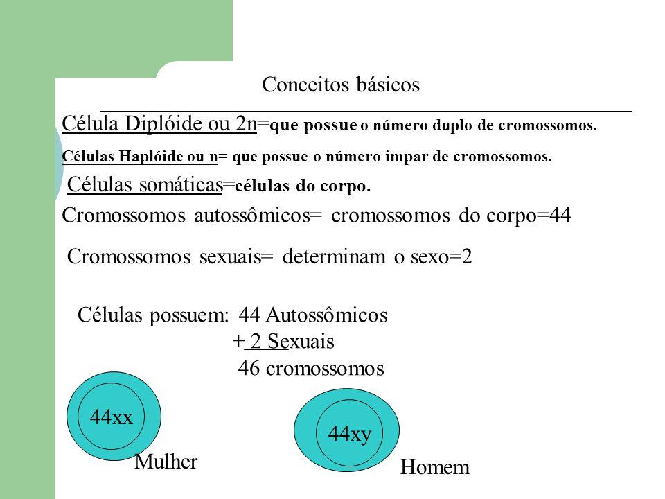 Célula Diplóide ou 2n=que possue o número duplo de cromossomos.