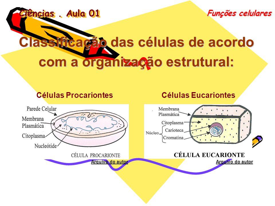 Classificação das células de acordo com a organização estrutural: