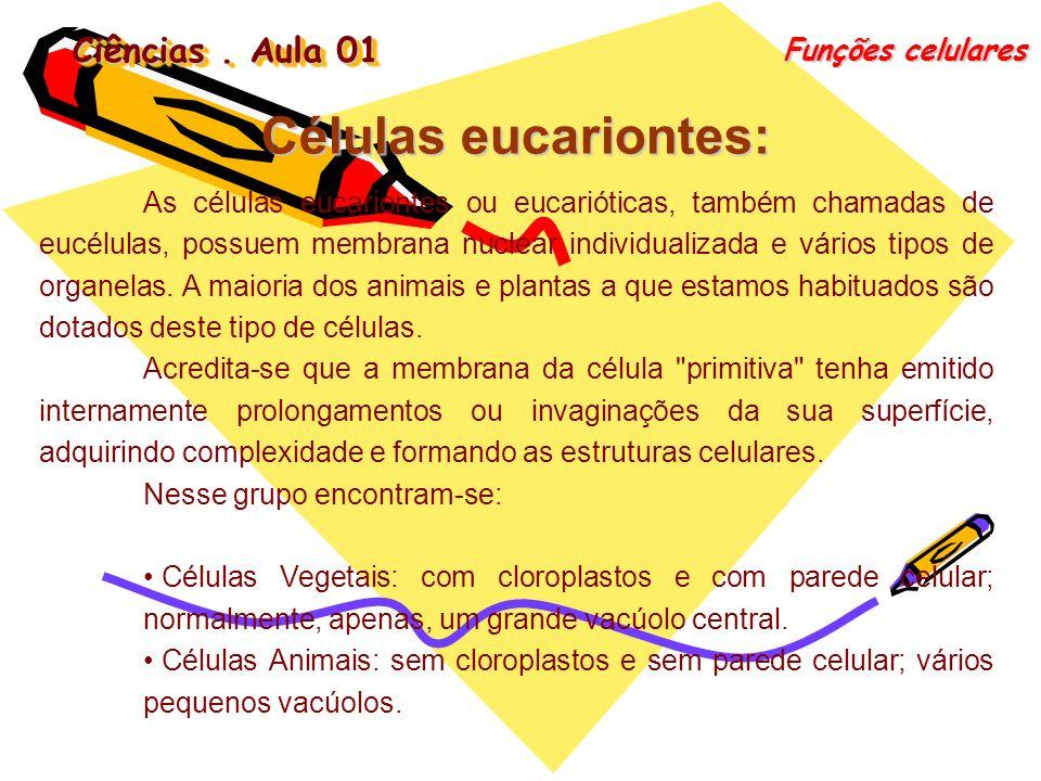 Células eucariontes: Ciências . Aula 01 Funções celulares