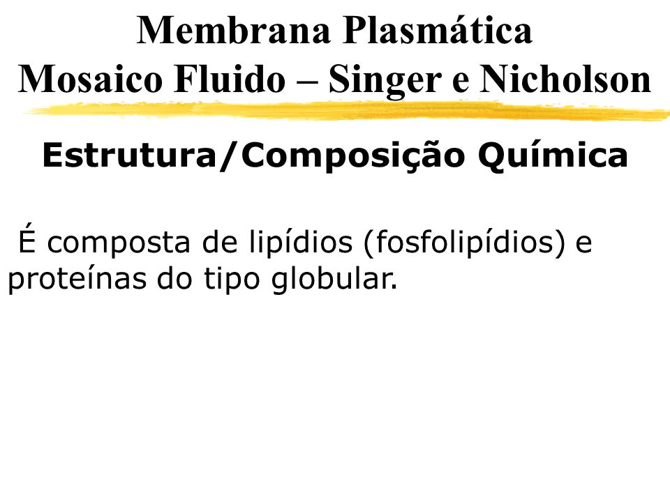 Mosaico Fluido – Singer e Nicholson Estrutura/Composição Química