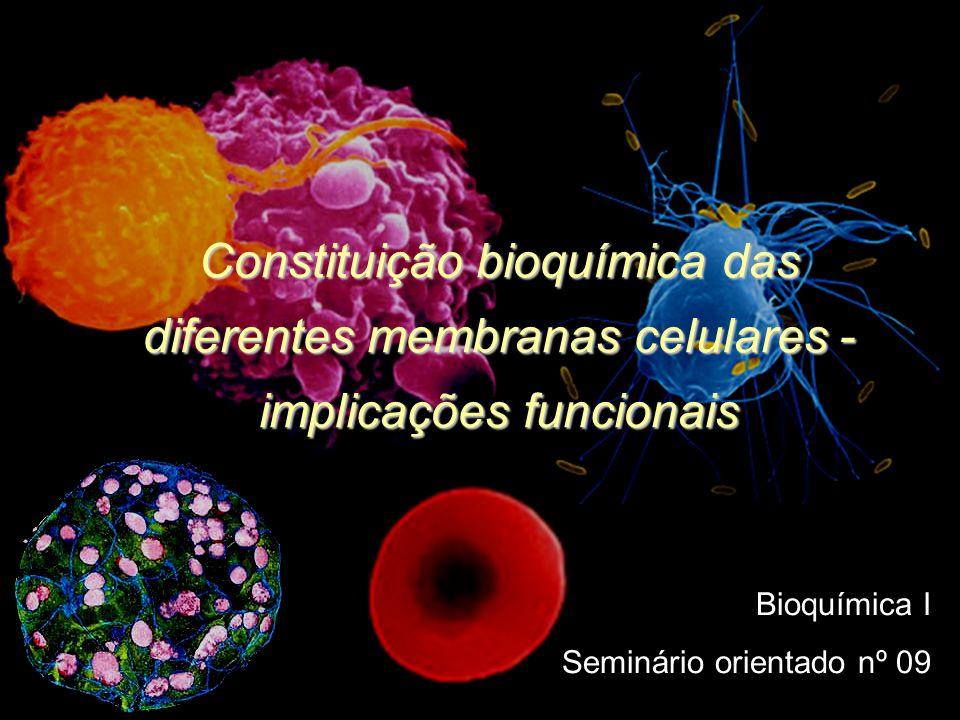 Constituição bioquímica das diferentes membranas celulares - implicações funcionais
