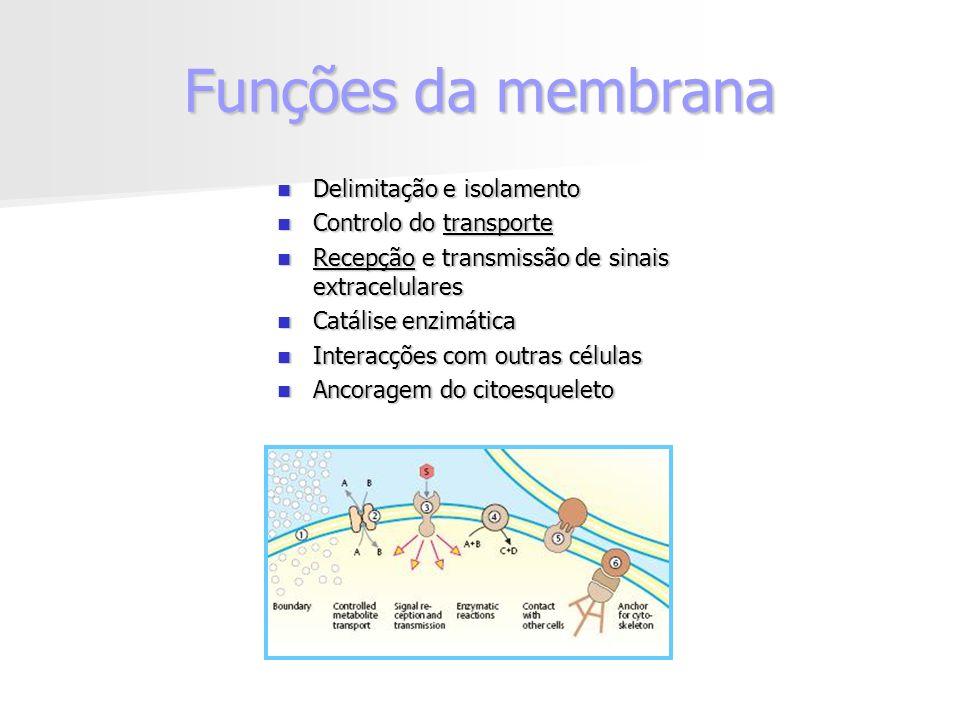 Funções da membrana Delimitação e isolamento Controlo do transporte
