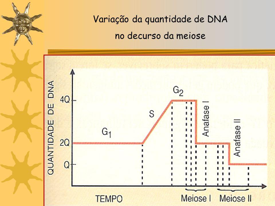 Variação da quantidade de DNA