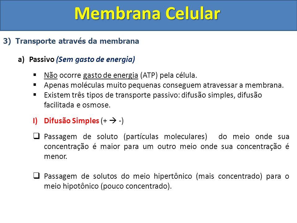 Membrana Celular Passivo (Sem gasto de energia)