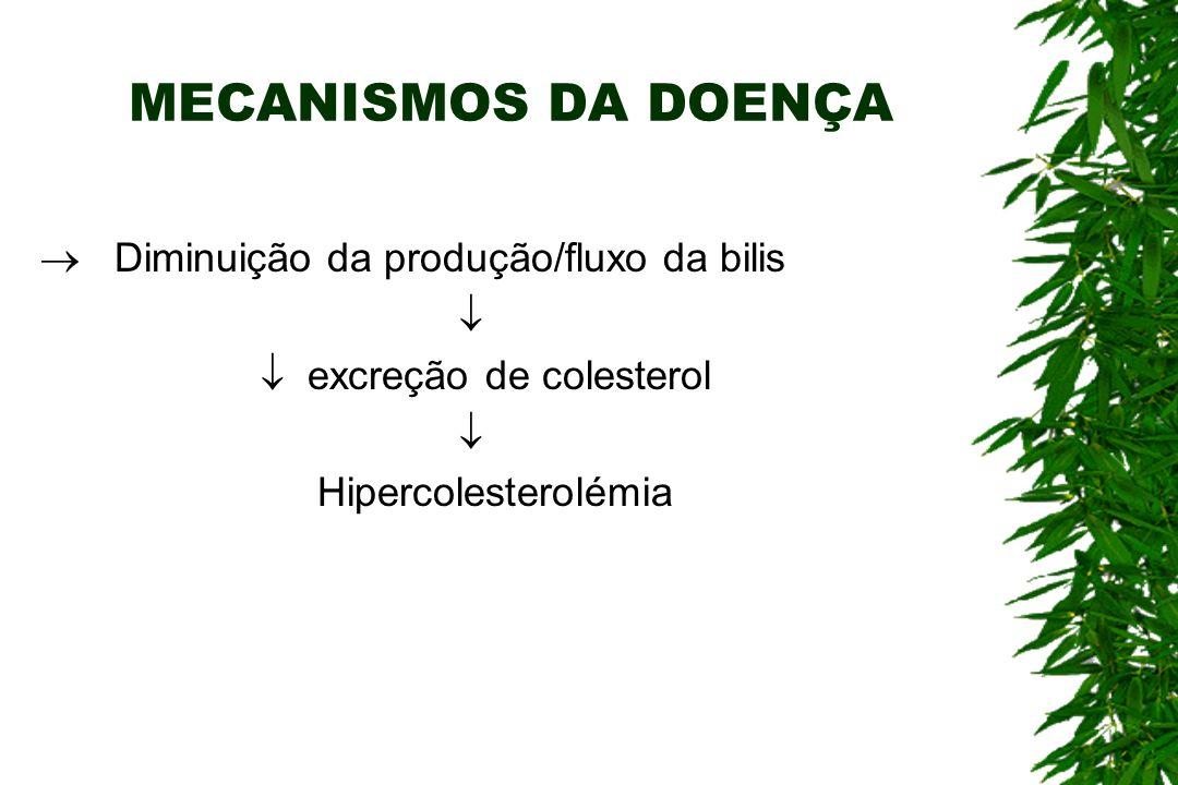 MECANISMOS DA DOENÇA  Diminuição da produção/fluxo da bilis 