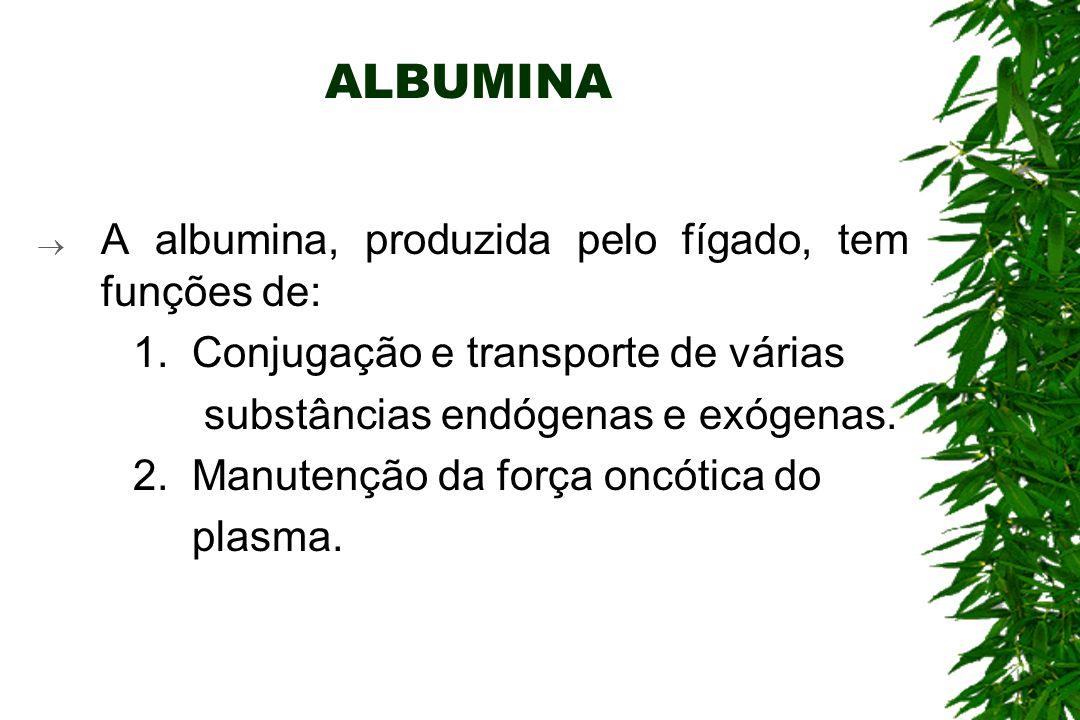 ALBUMINA A albumina, produzida pelo fígado, tem funções de: