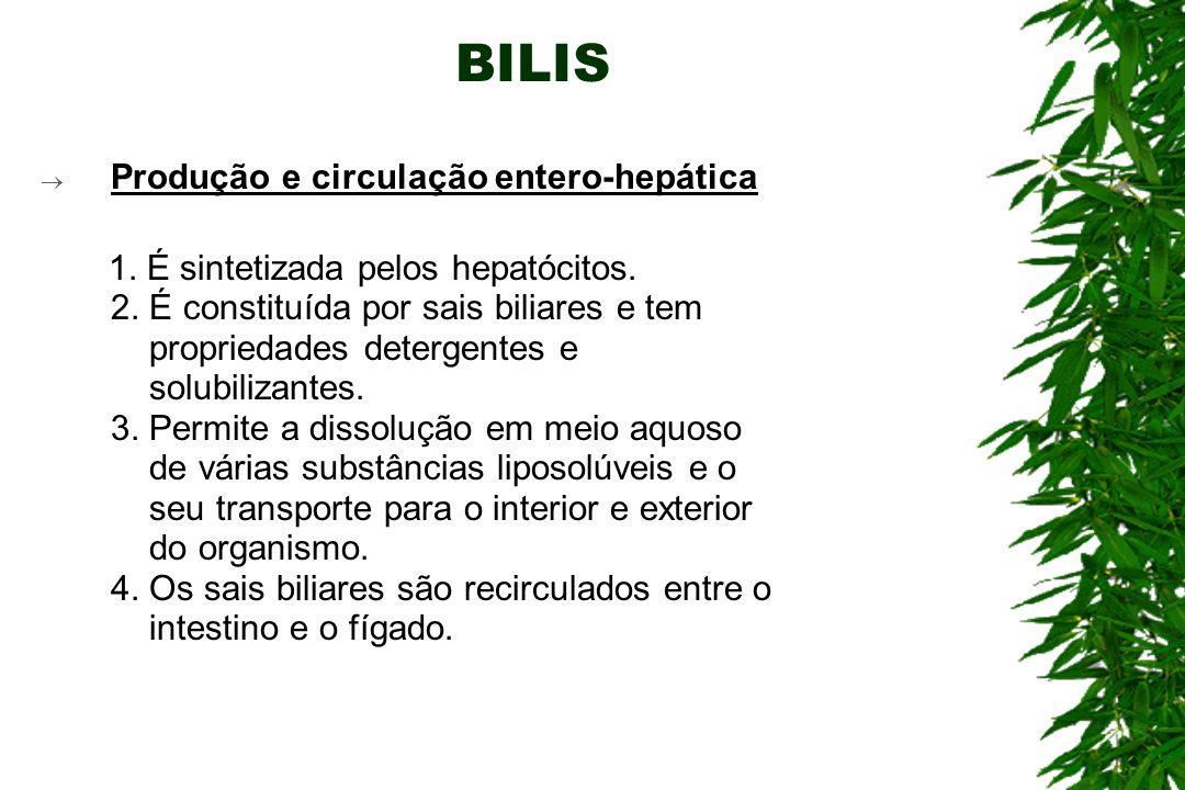 BILIS Produção e circulação entero-hepática