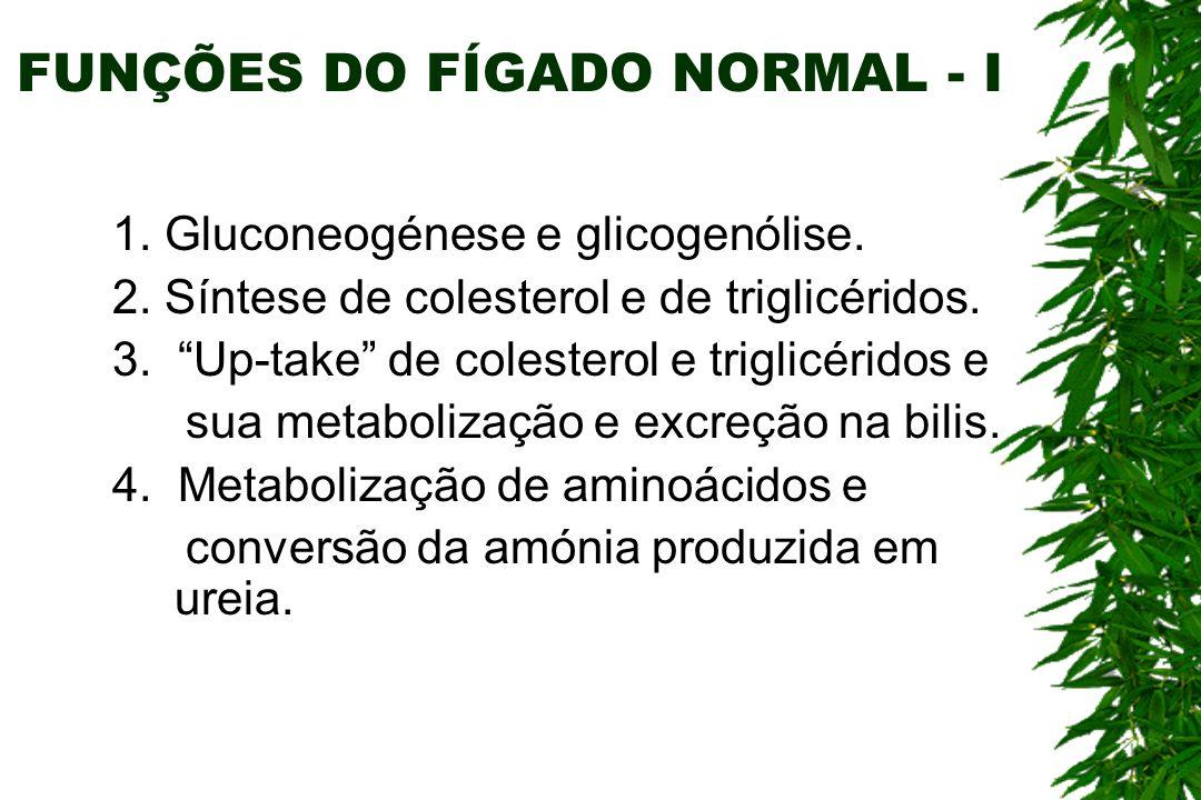 FUNÇÕES DO FÍGADO NORMAL - I