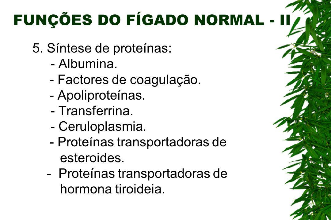 FUNÇÕES DO FÍGADO NORMAL - II