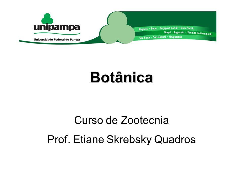 Curso de Zootecnia Prof. Etiane Skrebsky Quadros