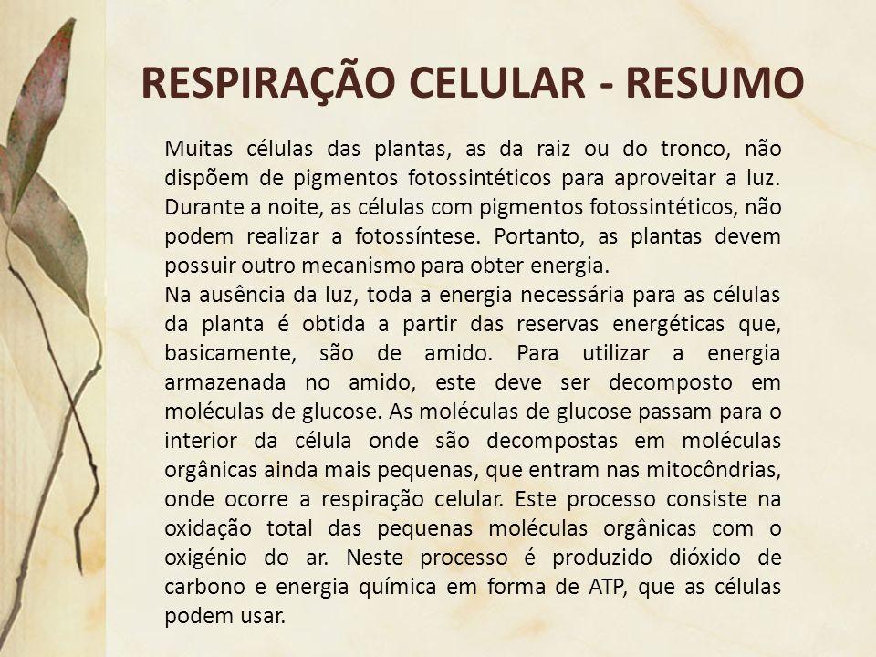RESPIRAÇÃO CELULAR - RESUMO