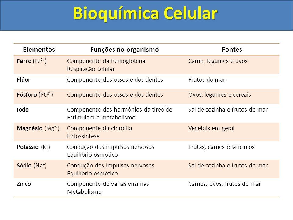 Bioquímica Celular Elementos Funções no organismo Fontes Ferro (Fe²+)