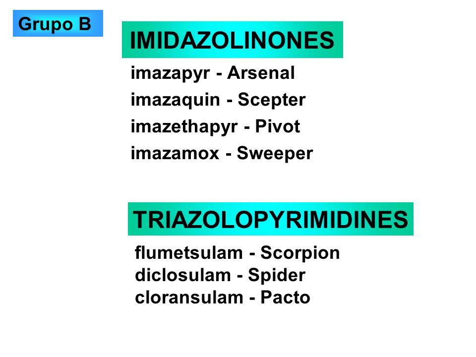 IMIDAZOLINONES TRIAZOLOPYRIMIDINES Grupo B imazapyr - Arsenal