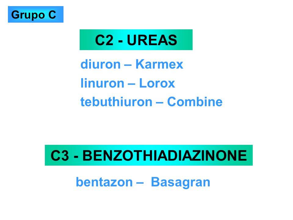 C3 - BENZOTHIADIAZINONE