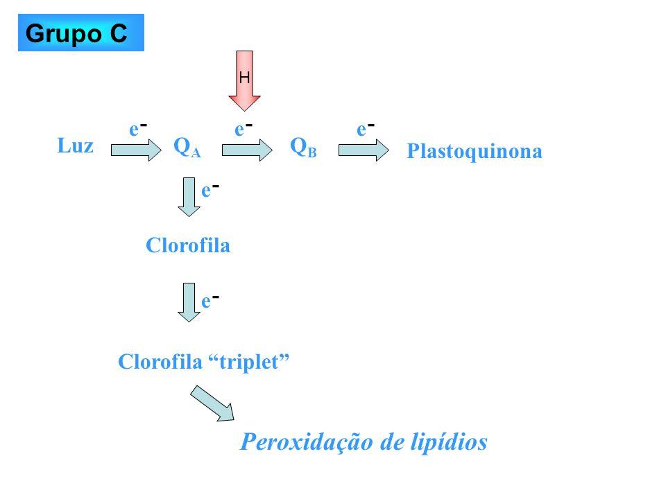 Peroxidação de lipídios