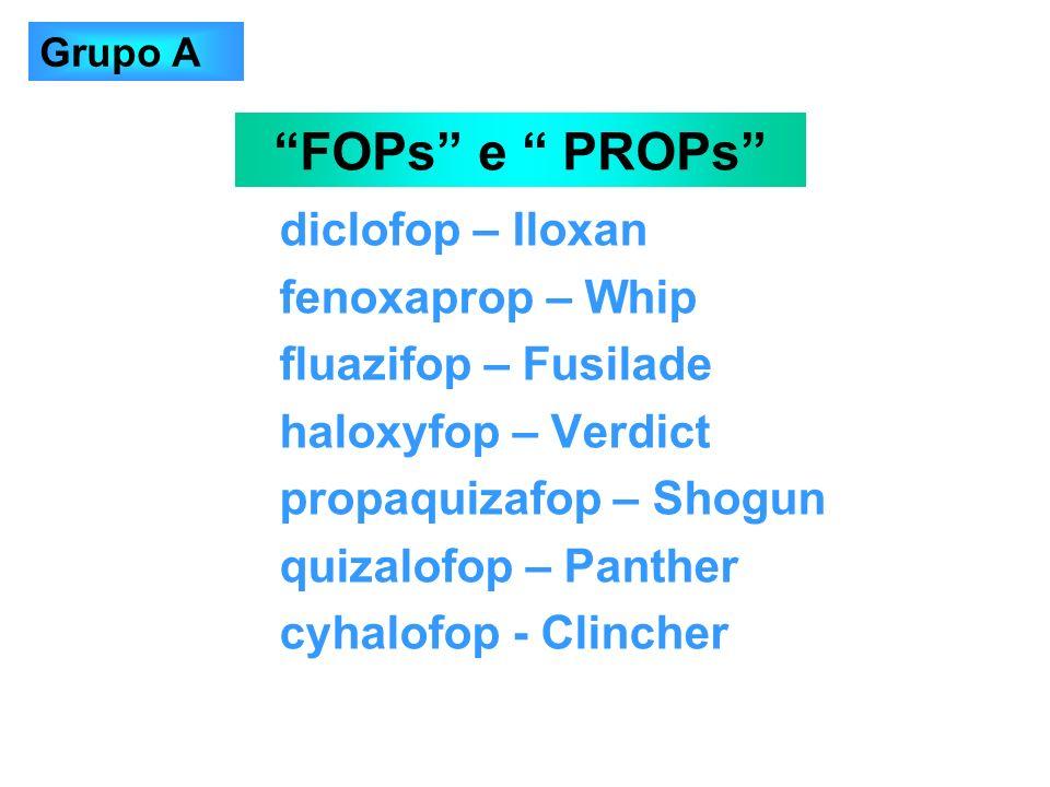 FOPs e PROPs diclofop – Iloxan fenoxaprop – Whip
