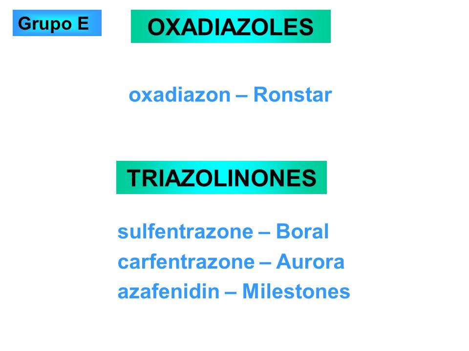 OXADIAZOLES TRIAZOLINONES