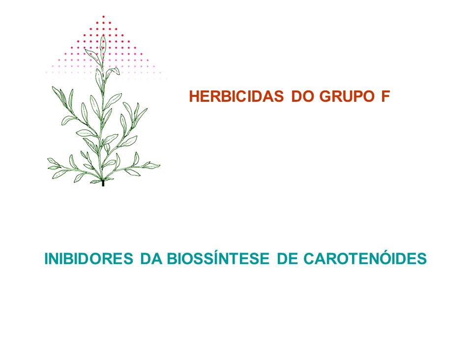 INIBIDORES DA BIOSSÍNTESE DE CAROTENÓIDES