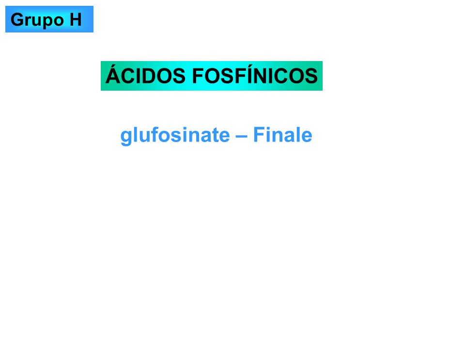 Grupo H ÁCIDOS FOSFÍNICOS glufosinate – Finale