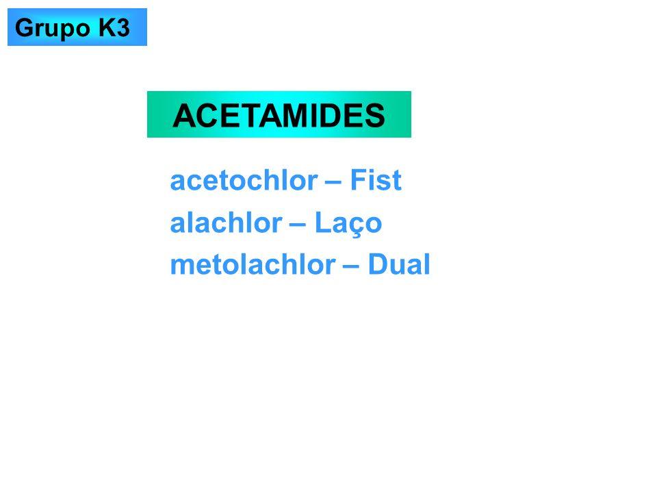 ACETAMIDES acetochlor – Fist alachlor – Laço metolachlor – Dual