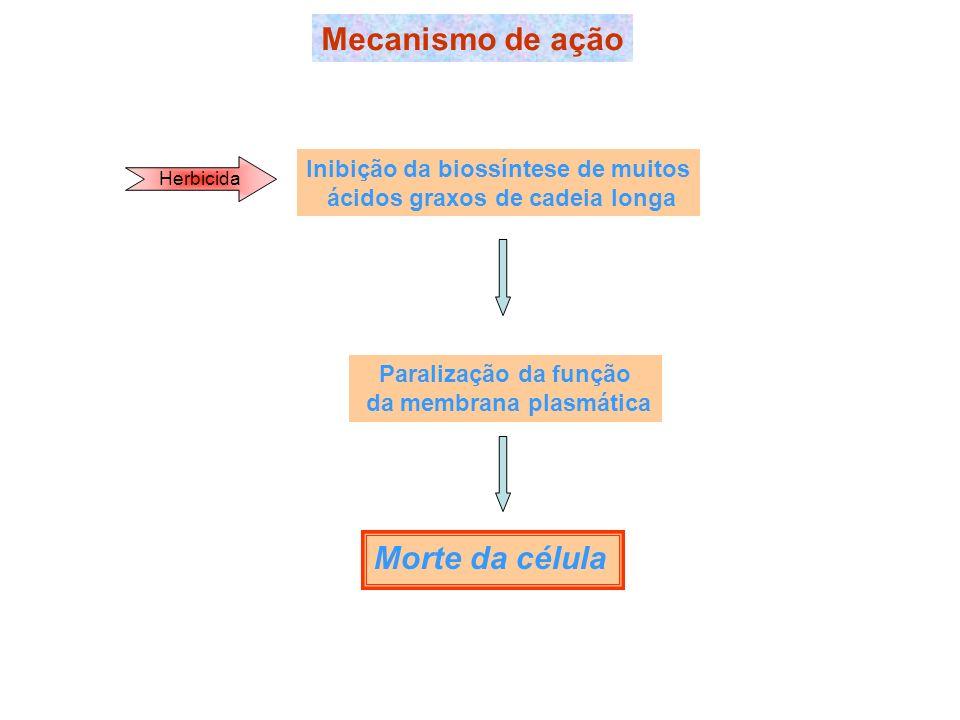 Mecanismo de ação Morte da célula Inibição da biossíntese de muitos