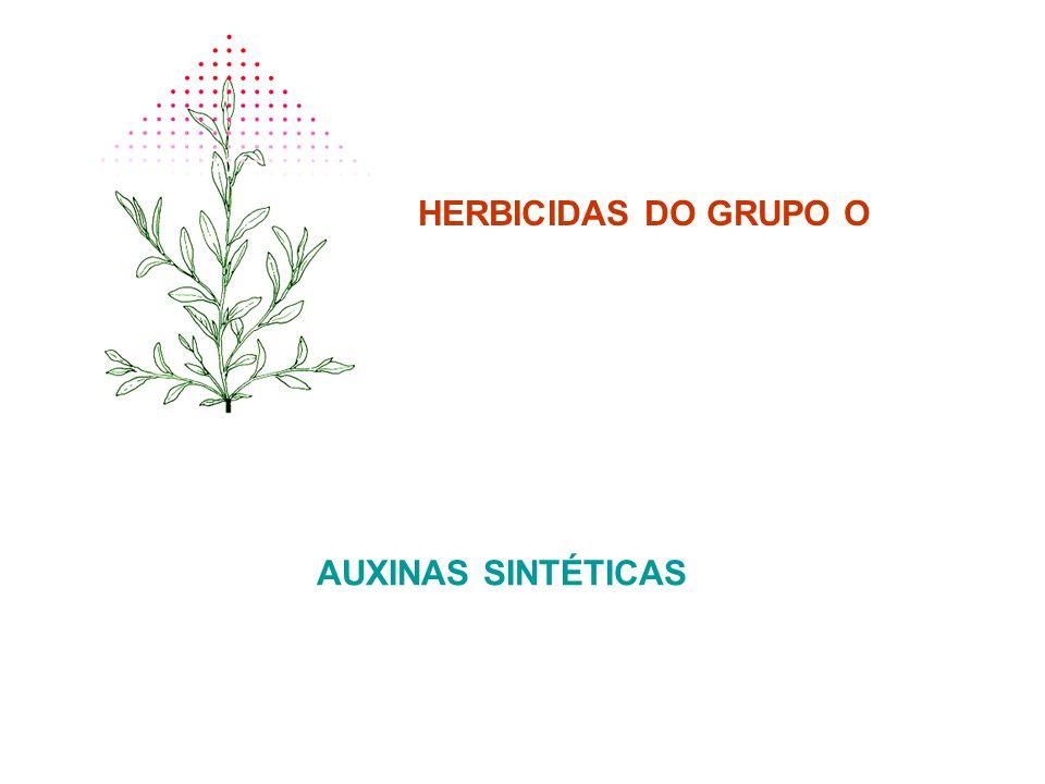 HERBICIDAS DO GRUPO O AUXINAS SINTÉTICAS