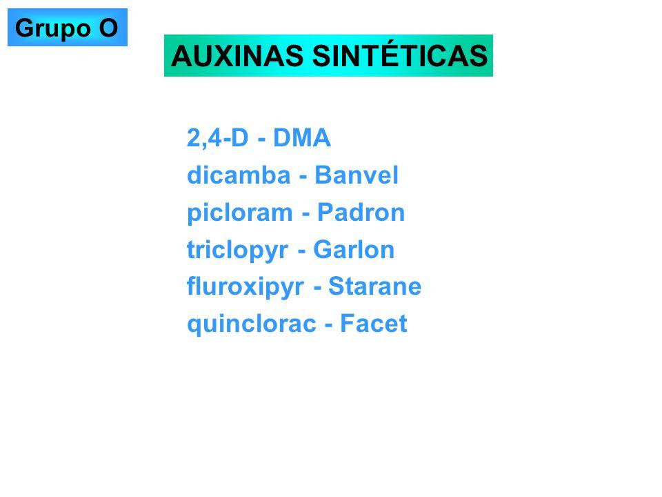 AUXINAS SINTÉTICAS Grupo O 2,4-D - DMA dicamba - Banvel