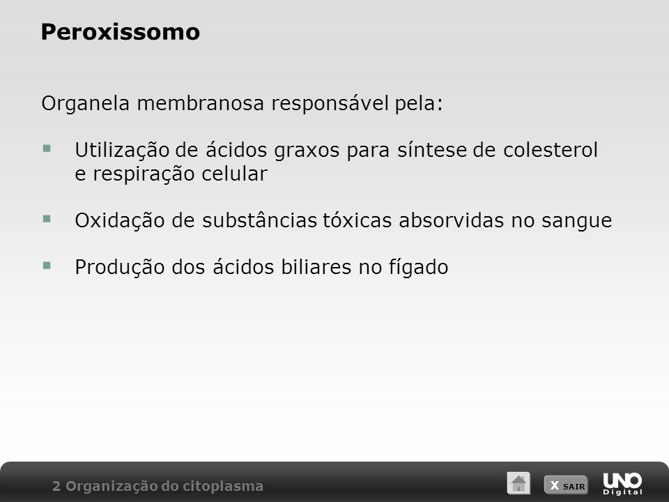 Peroxissomo Organela membranosa responsável pela: