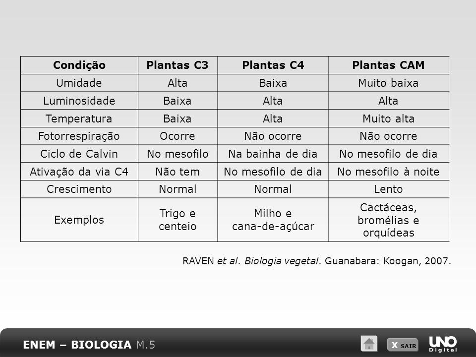 Condição Plantas C3 Plantas C4 Plantas CAM
