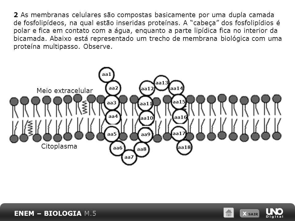 2 As membranas celulares são compostas basicamente por uma dupla camada de fosfolipídeos, na qual estão inseridas proteínas. A cabeça dos fosfolipídios é polar e fica em contato com a água, enquanto a parte lipídica fica no interior da bicamada. Abaixo está representado um trecho de membrana biológica com uma proteína multipasso. Observe.