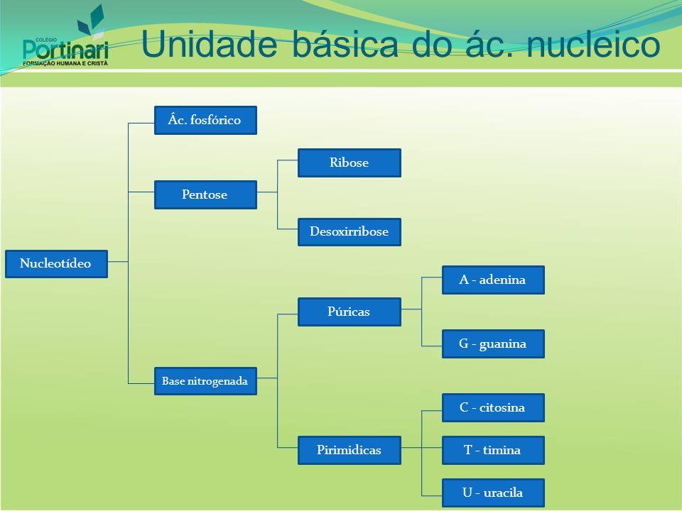 Unidade básica do ác. nucleico