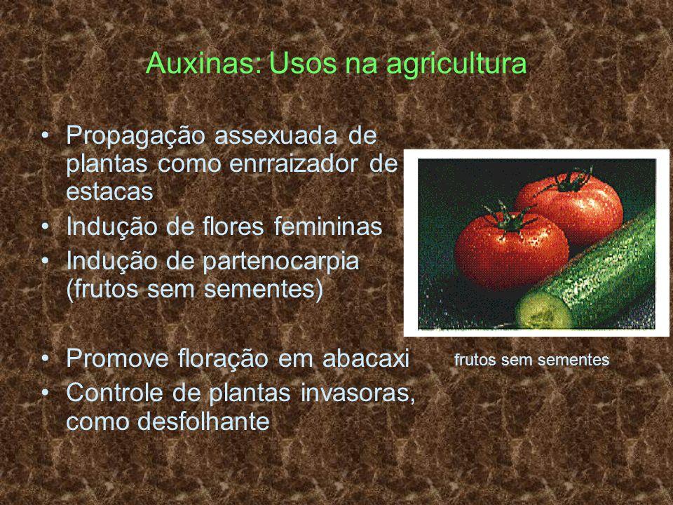 Auxinas: Usos na agricultura